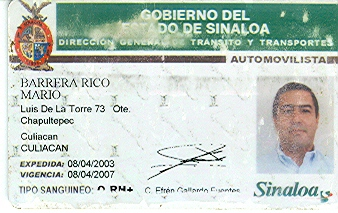 License License Drivers Sinaloa Sinaloa Drivers Sinaloa Drivers Sinaloa Drivers License
